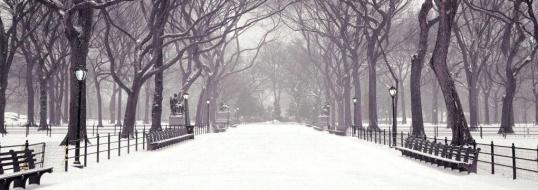 snow-head